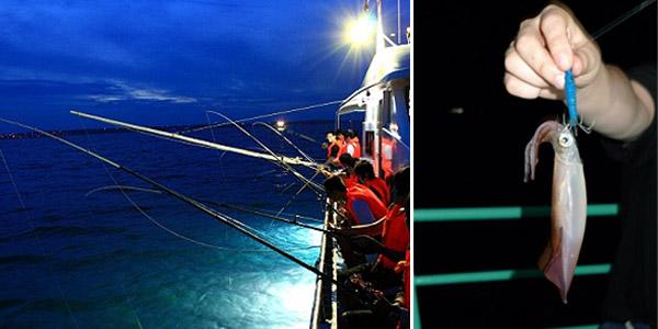 Night squid fishing in Phu Quoc island